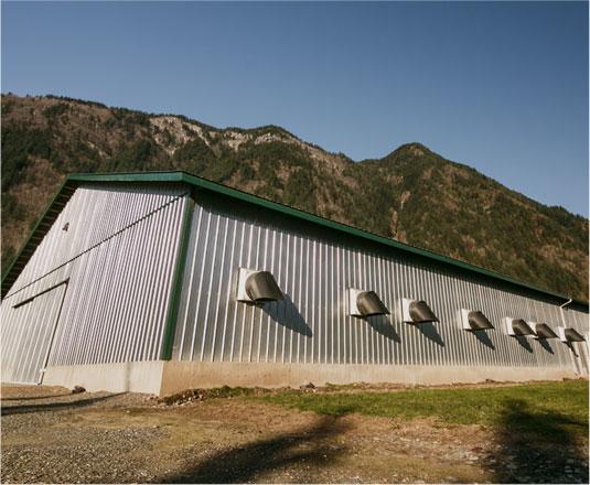 A Thomas Reid Farm poultry house.